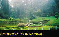 Coonoor Tour Package
